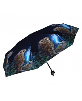 Parapluie gothique fantaisie Way of the Witch