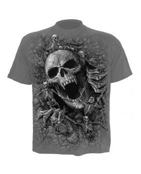 Tee shirt gris Skulls Cove