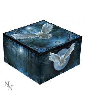 Boite à bijoux gothique Awaken Your Magic