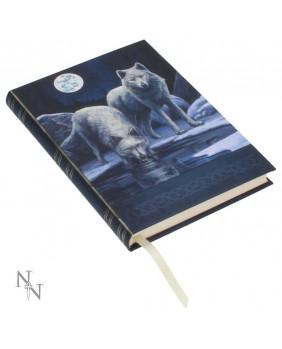 Journal intime Warriors of winter