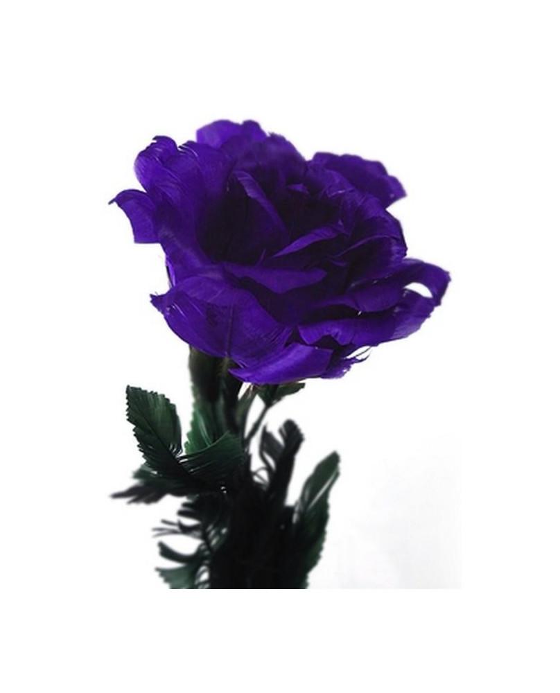 Rose beue ouverte 37202
