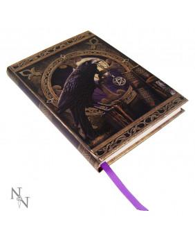 Journal intime gothique Lisa Parker Talisman