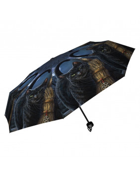 Parapluie chat Brush with Magick