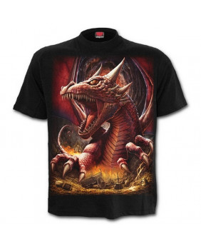 Tee Shirt homme AWAKE THE DRAGON