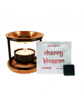 Brûle brique encens Aromafume Exotic Incense diffuser